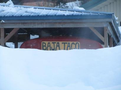 Our beloved Baha Taco is buried