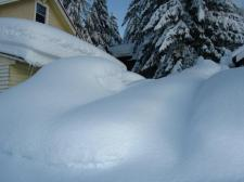 There's a jeep buried in there somewhere - Jan 6th
