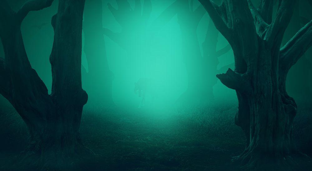 『時空の歪みの歪に入った体験談』- 異次元に行った不思議な体験