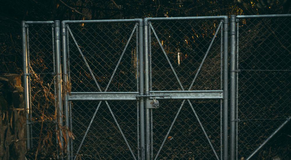 都市伝説まとめ『犬の宮・猫の宮』など 全10話【8】|オカルト・怖い話・不思議な話
