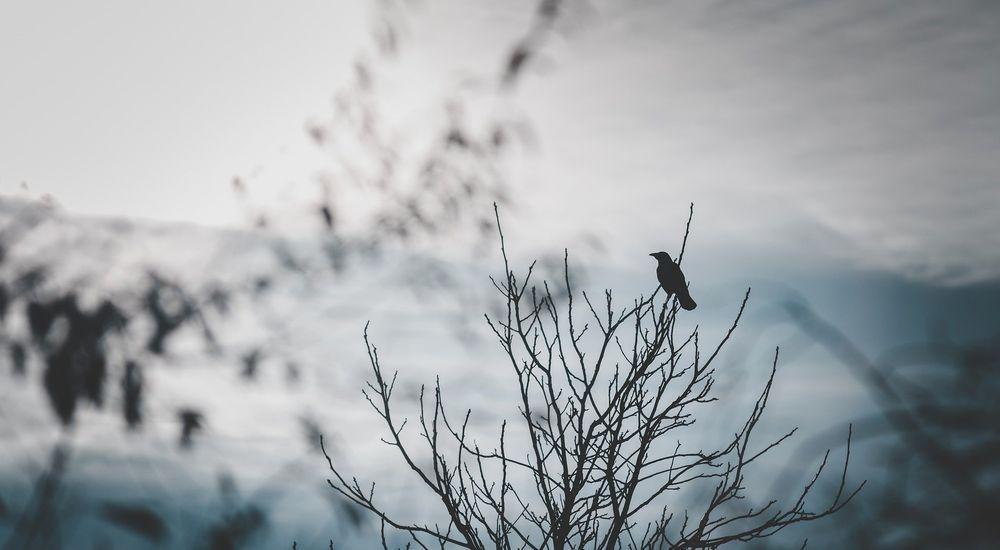 『御守り袋』呪いにまつわる怖い話【4】|厳選 洒落怖名作まとめ