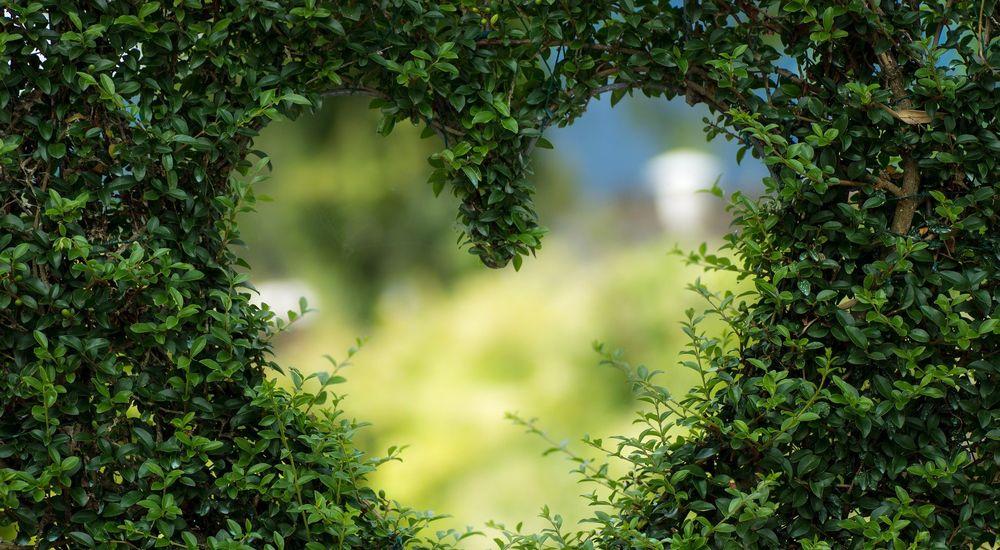 【愛の女神】日本と世界の『愛を司る神』 一覧