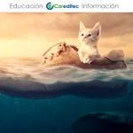 Tutorial Photoshop: Escena bajo el agua surrealista