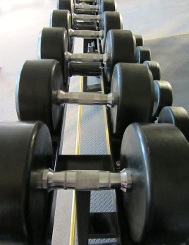 Free Weights Section Durrow Gym