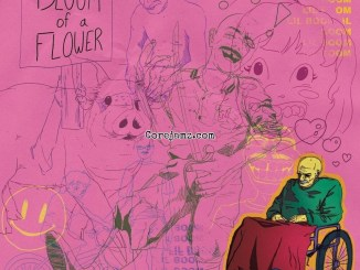 Lil Boom Bloom of A Flower Mp3 Download