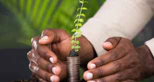What does a more desirable future for people and the planet look like. Shutterstock
