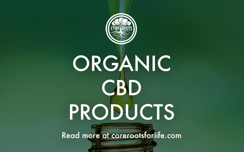 Why You Should Choose Organic CBD Products