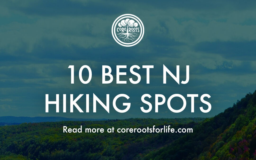 The 10 Best New Jersey Hiking Spots (And How To Recover The Day After)