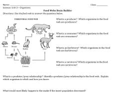 BrainBuilder Example Iteration 1