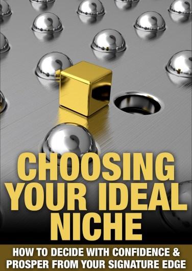 choose your ideal client niche