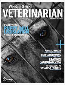 WCV-Sept-2013-thumbnail