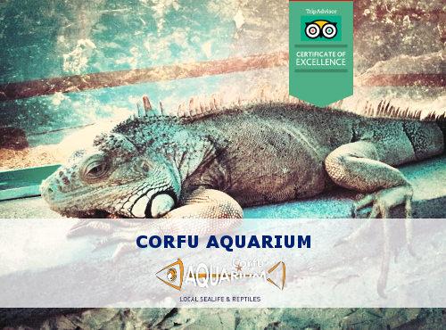 Corfu Aquarium