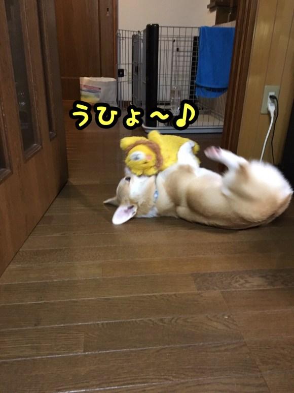 2016-09-18-07-07-01