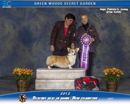 Katy-reserve-best-in-show