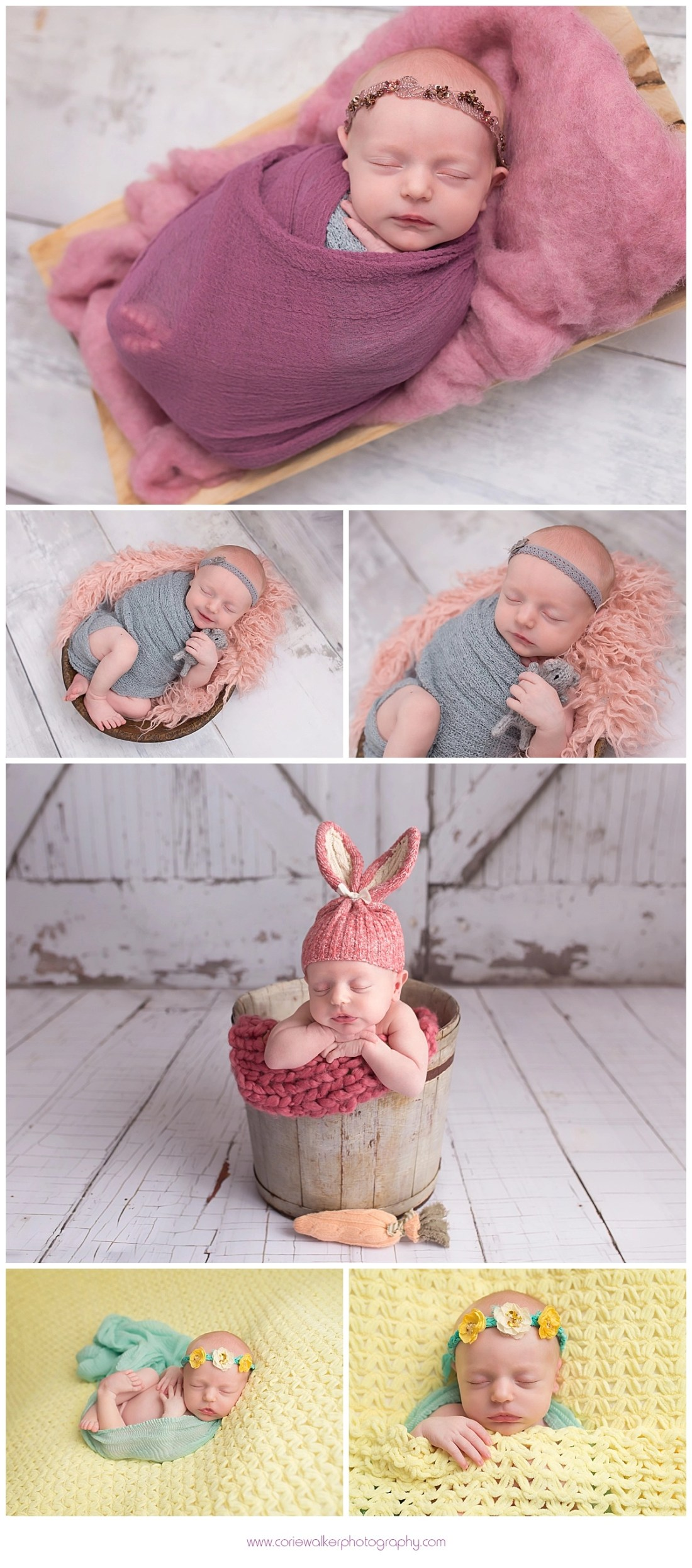 Hudson Ohio Newborn Portraits