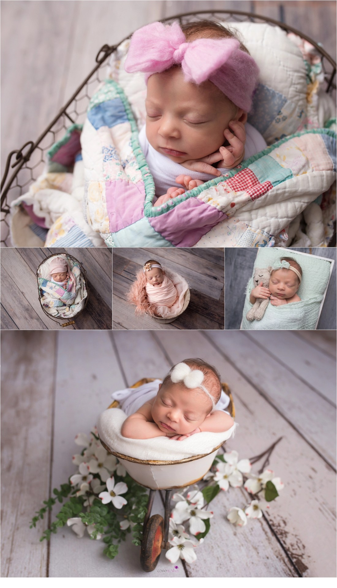 new baby photo session