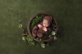 Hudson OH Fairytale Newborn