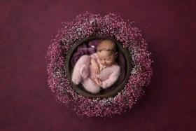 newborn girl purple wreath