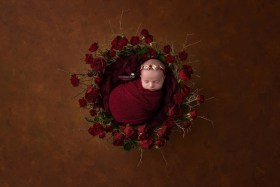 newborn-rose-wreath