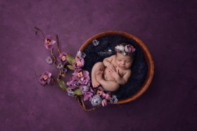 Solon OH Cleveland Newborn Photographer