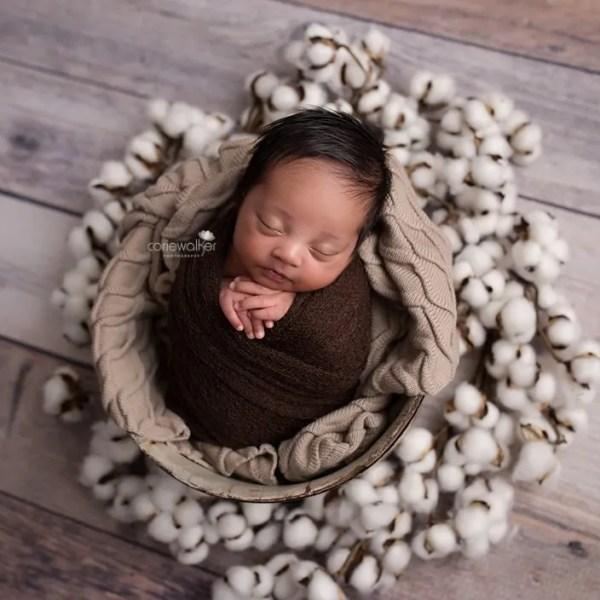 best newborn studio hudson