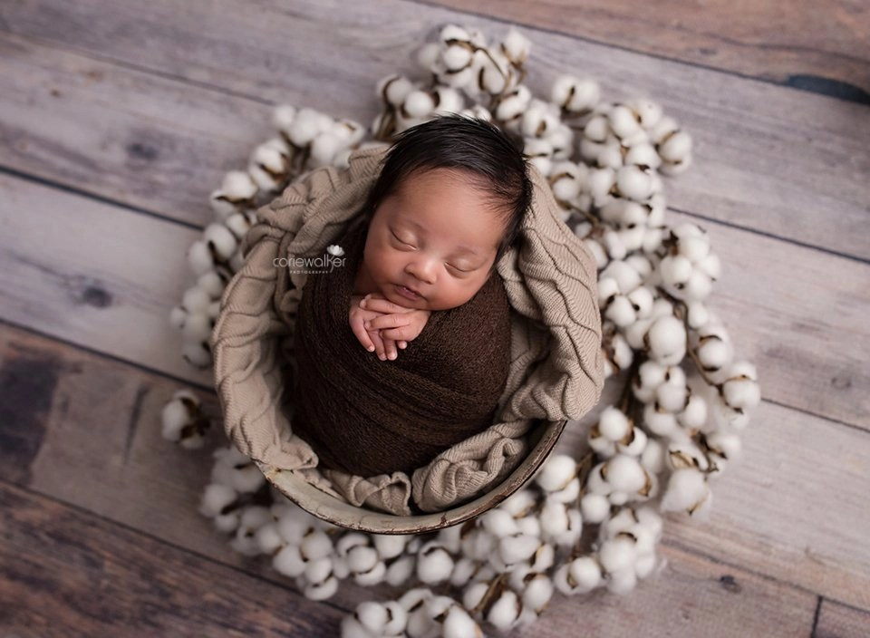 best newborn studio hudson