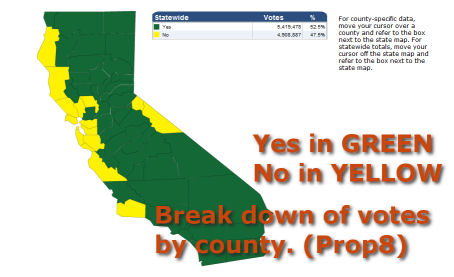 How California Voted on H8