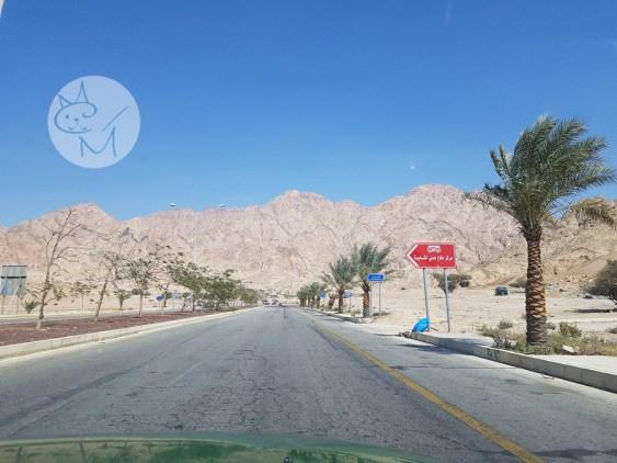 Taximestristul din Iordania ne-a negociat…în favoarea noastră! (ep 3)