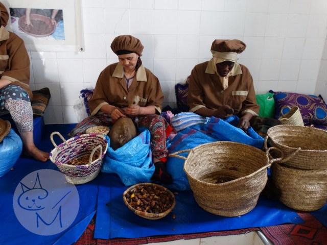 Uleiul de argan, o tradiție marocană ținută cu trudă – road trip în Maroc (ep 4)