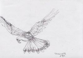 Mar30_oneliner bird at hairdresser 1