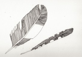 Apr15_feathers WIP