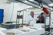 Atelier de mareyage Criée du Guilvinec