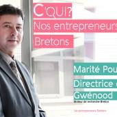 Affiche Les Entrepreneurs Bretons Quimper