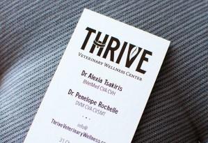 logo, holistic, wellness center, business card, Little Silver, New Jersey, Red Bank