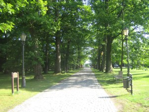 Lane way to Palac Ciekocinko