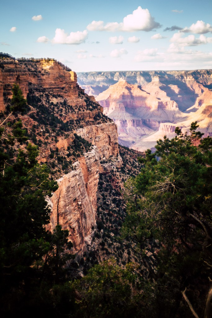 I took a vacation to Las Vegas to visit family, and I visited the Grand Canyon again.