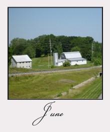 June, blue skies, green grass