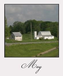 May, grass is greening