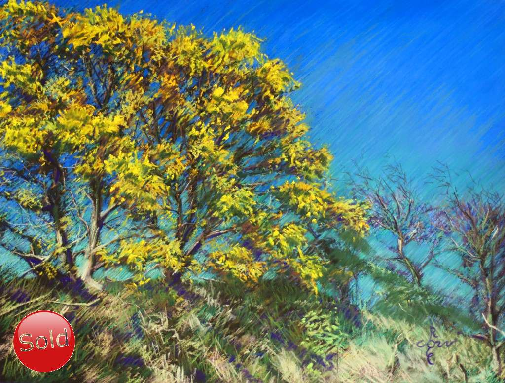impressionist treescape pastel drawing promotion