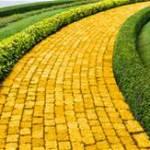 Yellow Brick Road to Emerald City