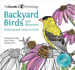 Backyard Birds Blossoms Coloring Page Downloads Cornell Lab Publishing Group