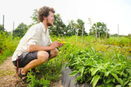 Phil Duvall '15 crouching in the vegetable patch.