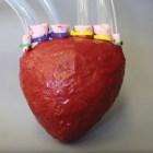 Pg-6-Heart