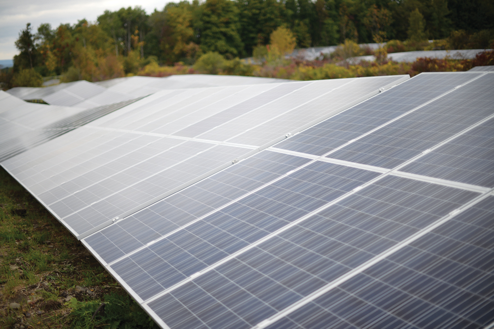 Pictured above is the Snyder Road Solar Farm, Cornell's first large-scale solar initiative. This is one step in Cornell's plans for a low carbon future.