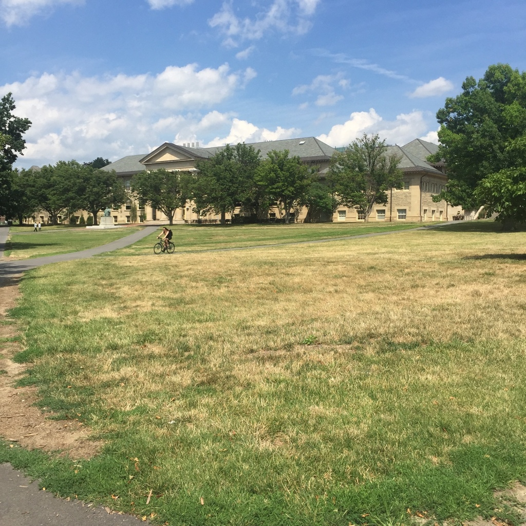 Cornell has requested a 30 percent reduction of water usage to prepare for incoming students arriving to campus in coming weeks.