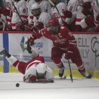 A year removed form getting blown out by Ohio State in the championship game,  Cornell will get another shot at the Florida College Hockey Classic title.
