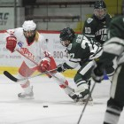 Cornell took care of business last weekend with wins over Union and RPI.