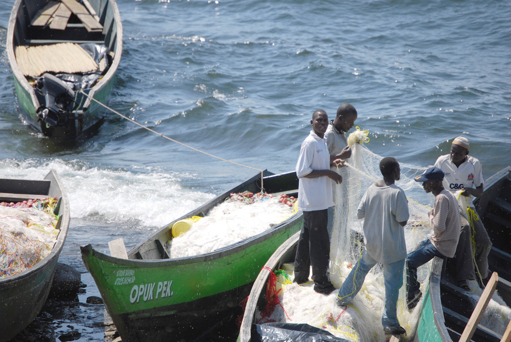 Fishermen inspect monofilament fishing lines on Lake Victoria's shore.