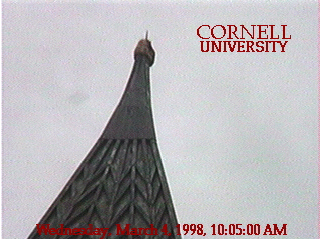 A shot from the live-stream of the PumpkinCam in 1997.