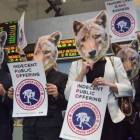 """Painted with """"Wear your own skin!"""" students protested Canada Goose's use of live-plucked down and its method of procuring coyote fur and other furs in general."""